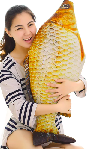 Fish Gift Ideas for Fish Enthusiasts